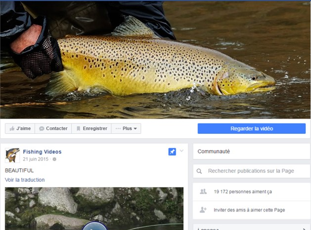 Facebook fishing videos de video-fishing.com